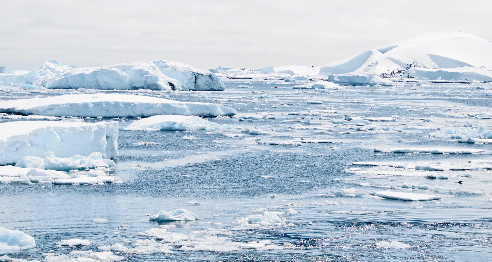 En 2020, con un calentamiento global que ya ha alcanzado 1 ºC, el cambio climático ha provocado grandes cambios en el planeta.