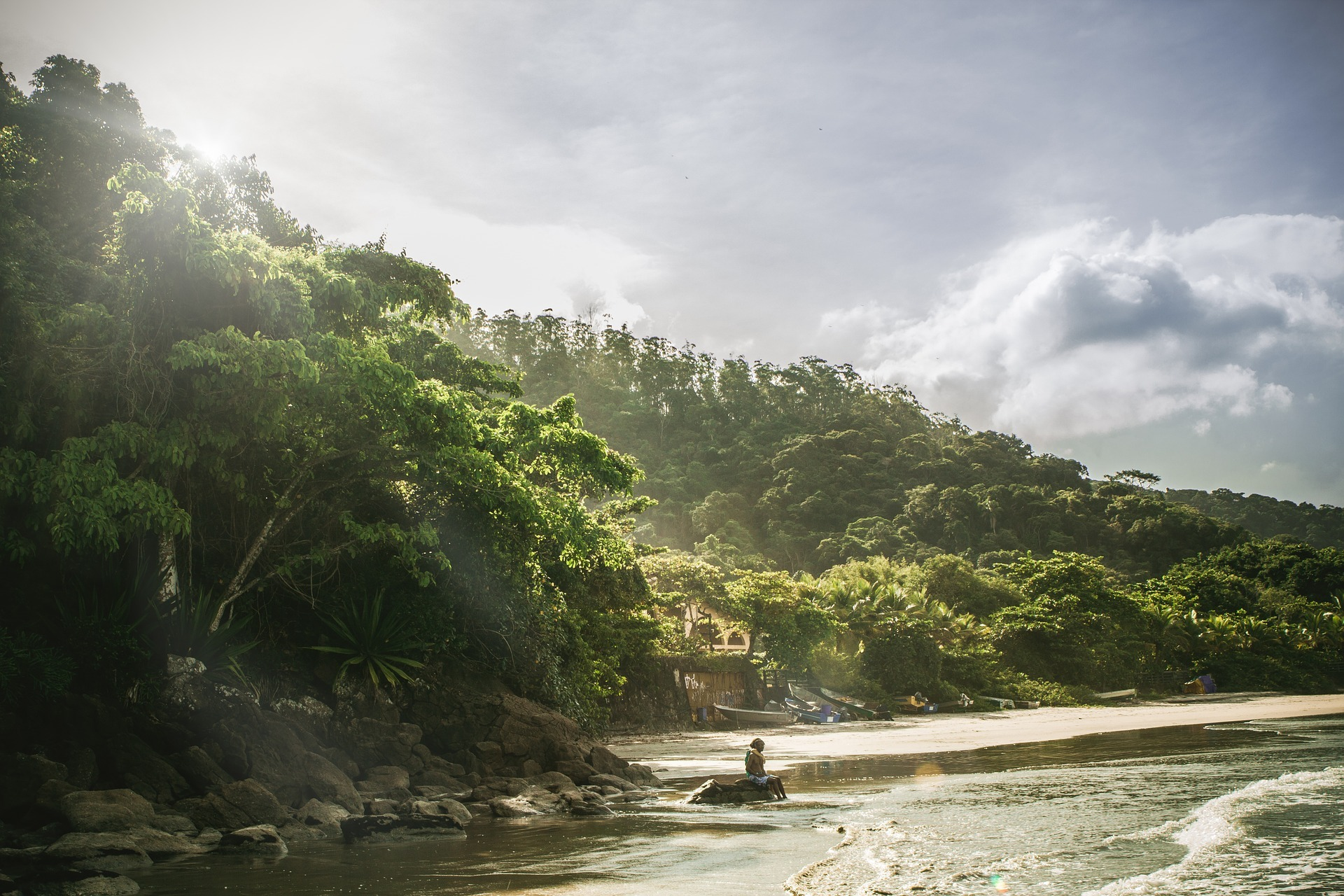 Comunidades que conservan sus bosques y también los restauran pueden vivir de ellos.