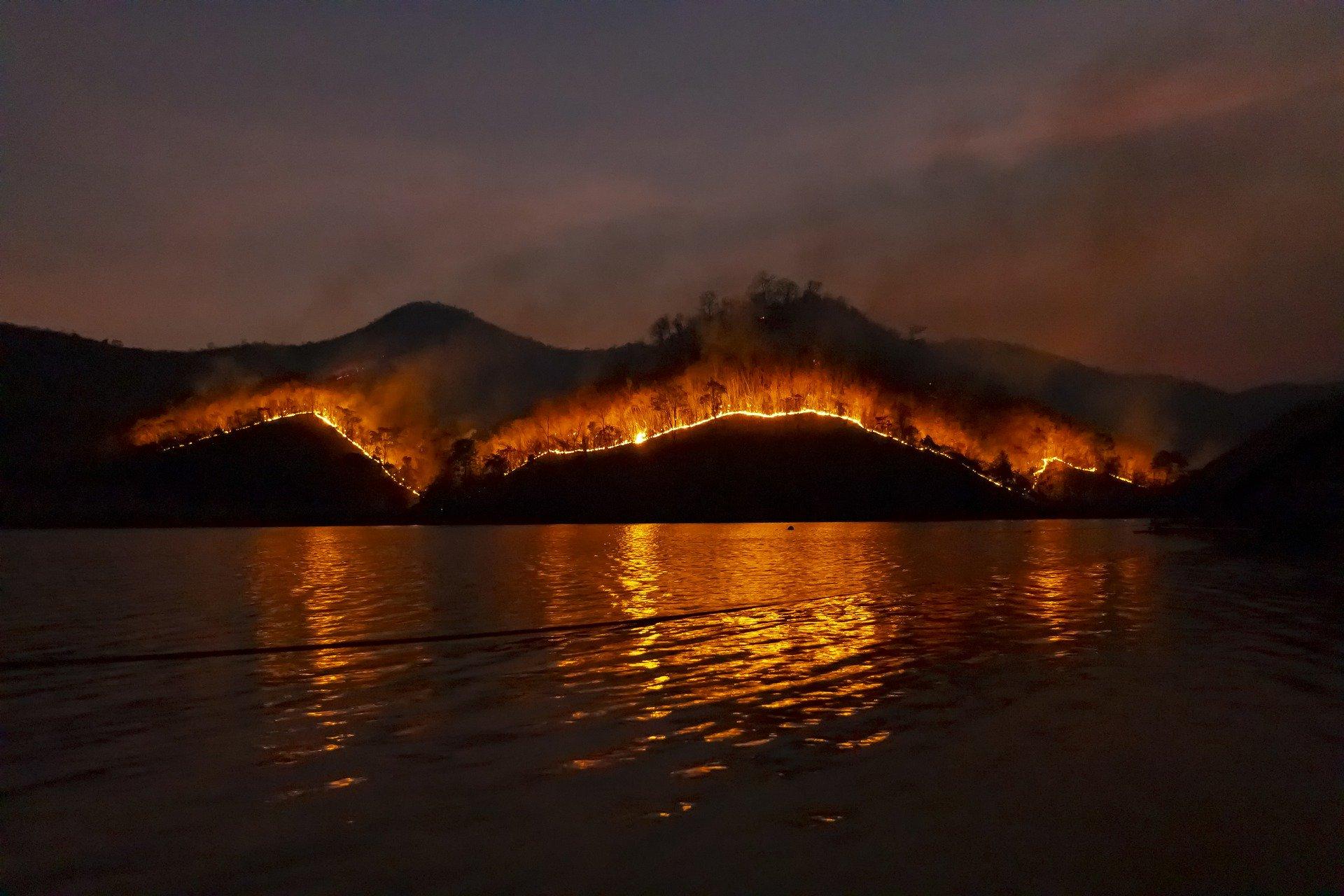 incendios y fragmentación de ecosistemas