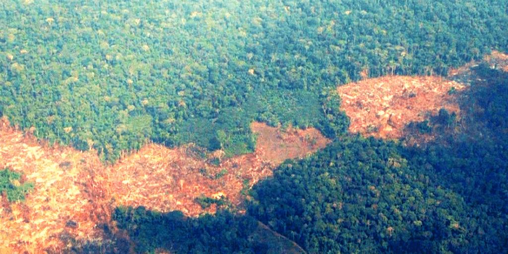 La deforestación de la Amazonía en Colombia ha afectado al territorio Nukak Makuk
