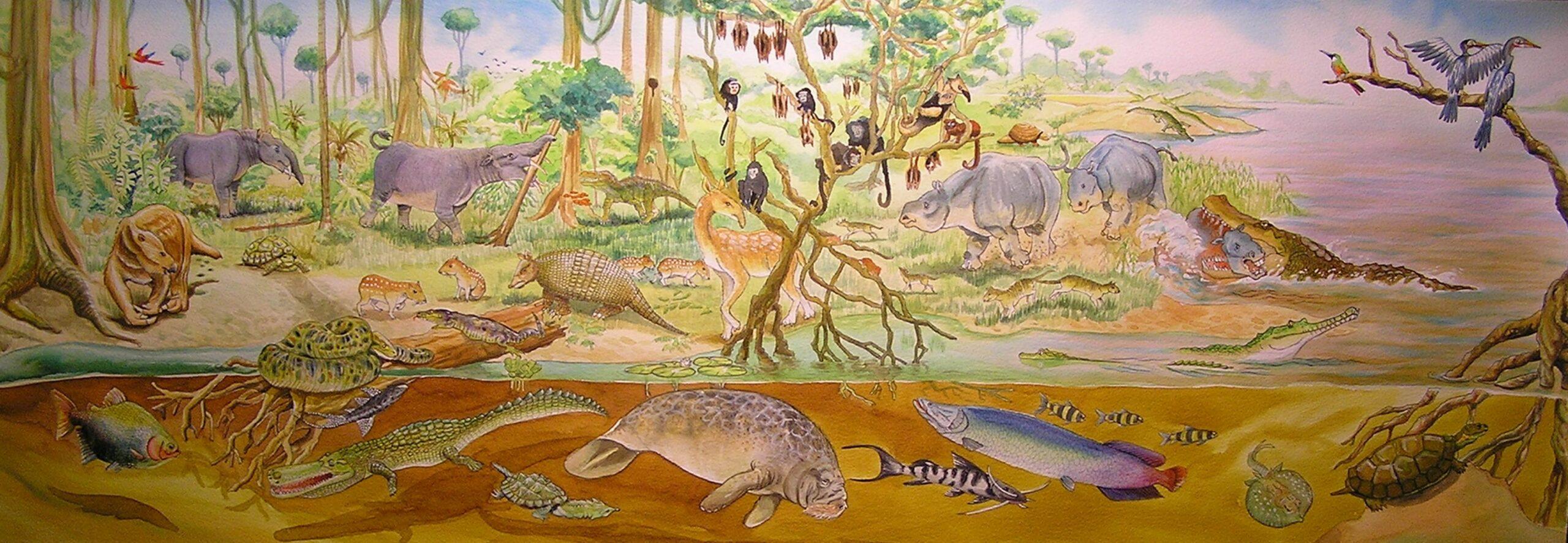 Ilustración Jorge Moreno- Bernal ,fauna de la Venta, hoy Desierto de la Tatacoa con presencia de Potamosiren magdaleniensis