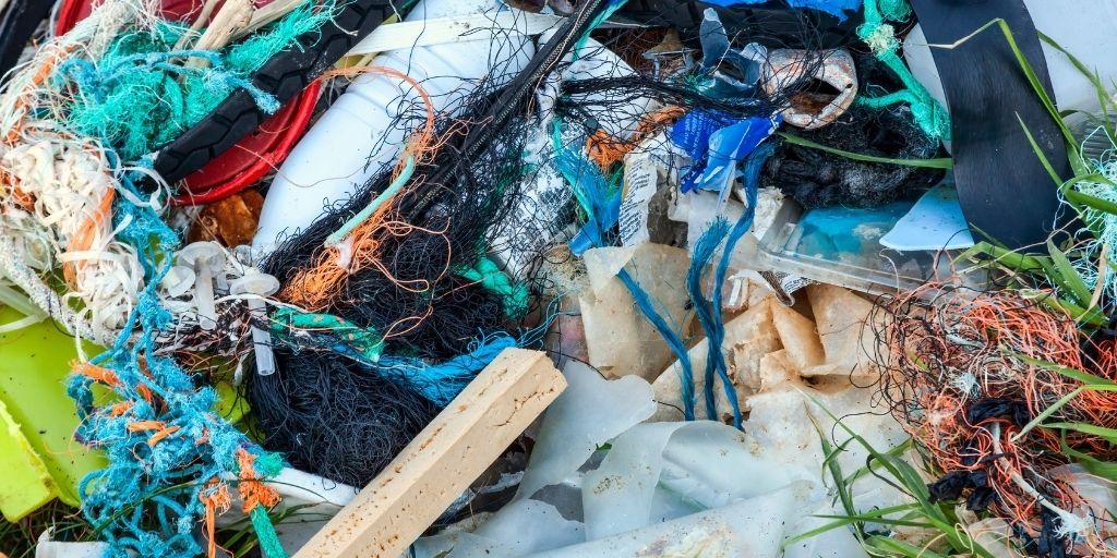 Según WWF, las redes fantasma le causan daño al 66 % de las especies de mamíferos marinos.