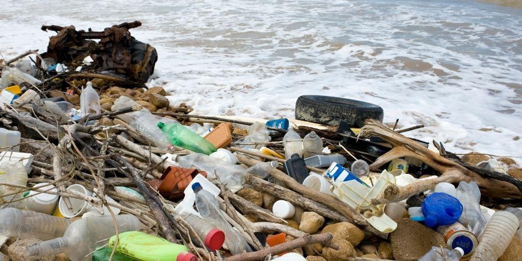 La ingestión de residuos plásticos en animales marinos se ha duplicado desde 1997, pasando de 267 a 557 especies según cifras de WWF..
