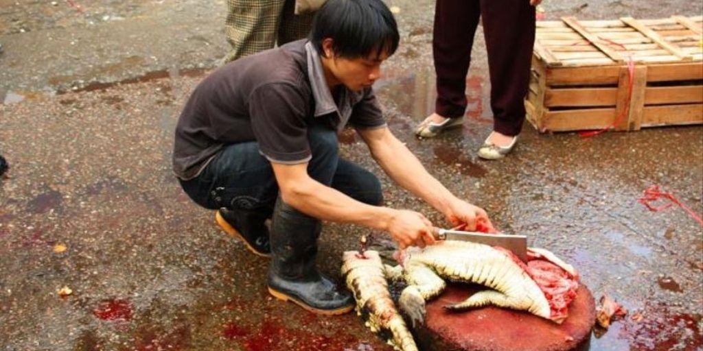 El gobierno chino anunció una prohibición amplia del consumo de animales silvestres en febrero de 2020