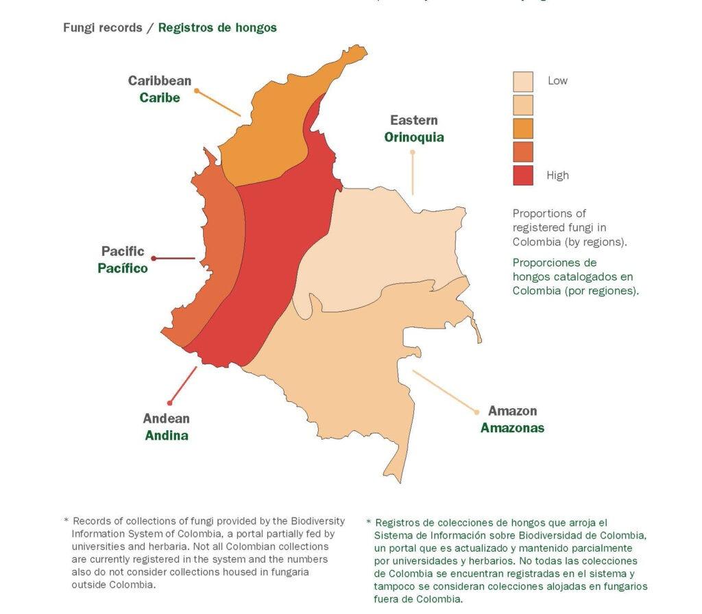 Mapa Colombia Reporte Imagen @RBG Kew.